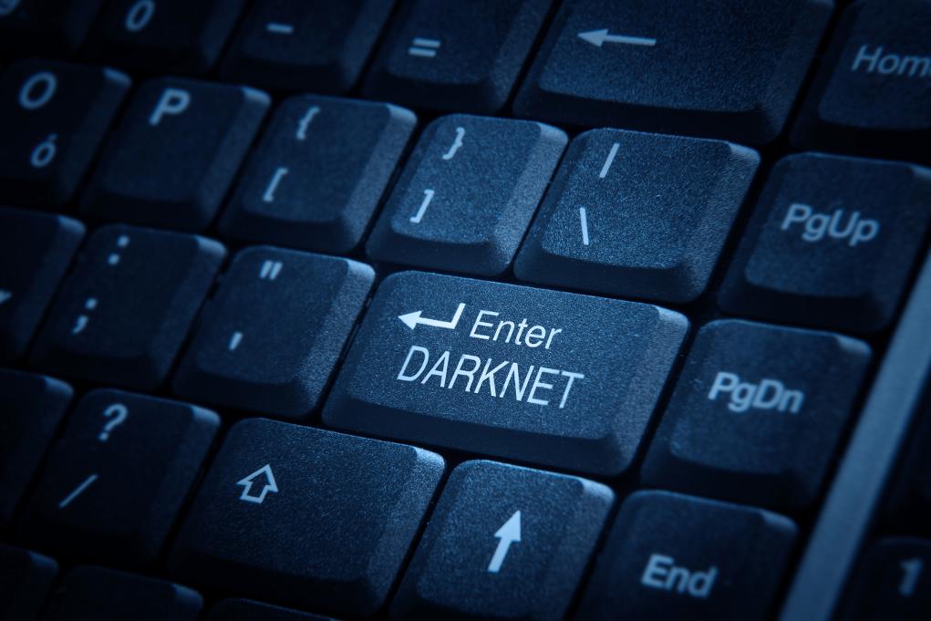 [Articolo] Facciamo un tuffo nel dark-web: cosa c'è oltre iltunnel?
